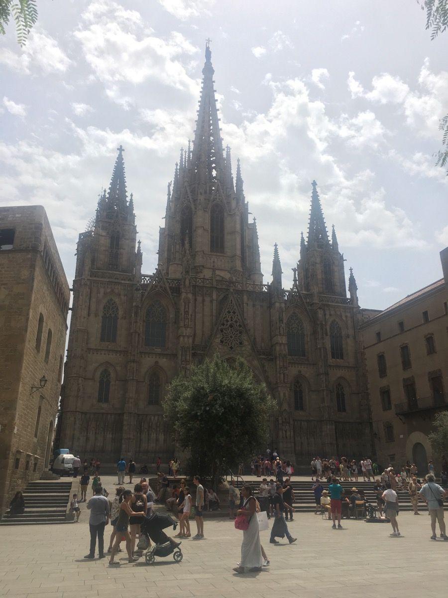 Собор Святой Евлалии (La Catedral de la Santa Cruz y Santa Eulalia)