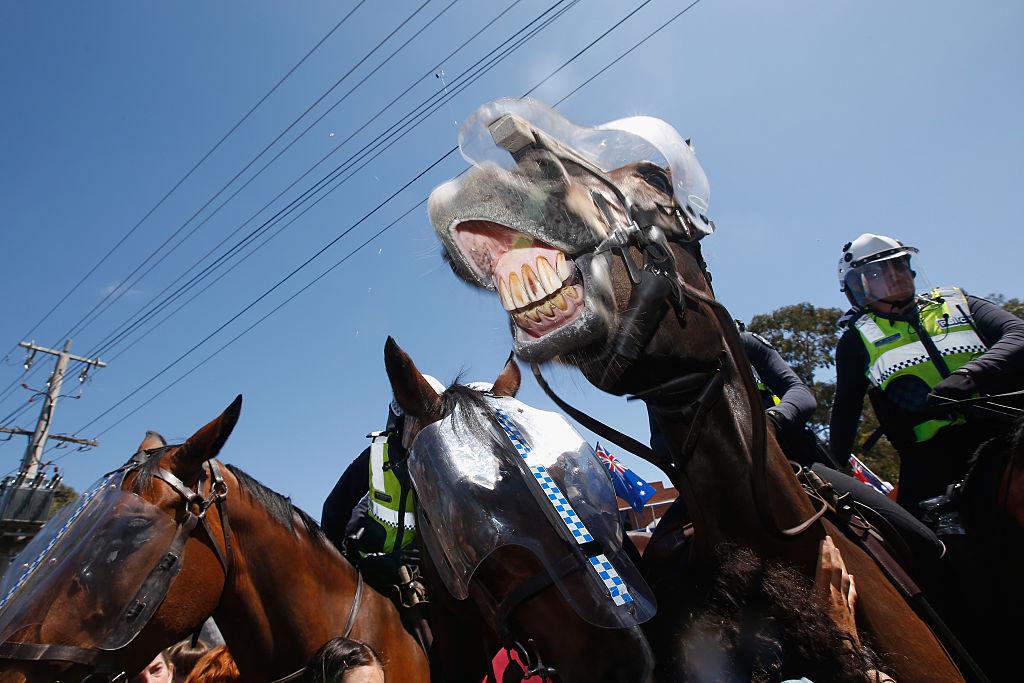 В Мельбурне полиция ответственная и креативная