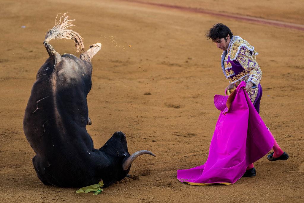В выходные в Испании можно сходить на корриду
